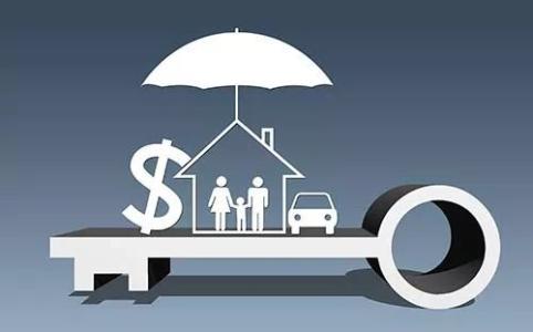 纯保障保险 , 更好的纯保证保险,请推荐
