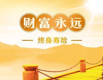 终身寿险哪家好 ,哪个更好,中国人寿终身寿险